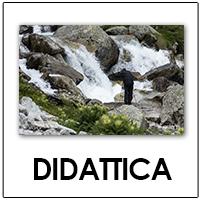 DIDATTICA_BUTTON